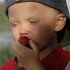 Problemas con la comida en niños adoptados